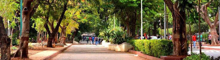 K.J Somaiya Institute of Management Studies and Research (SIMSR)
